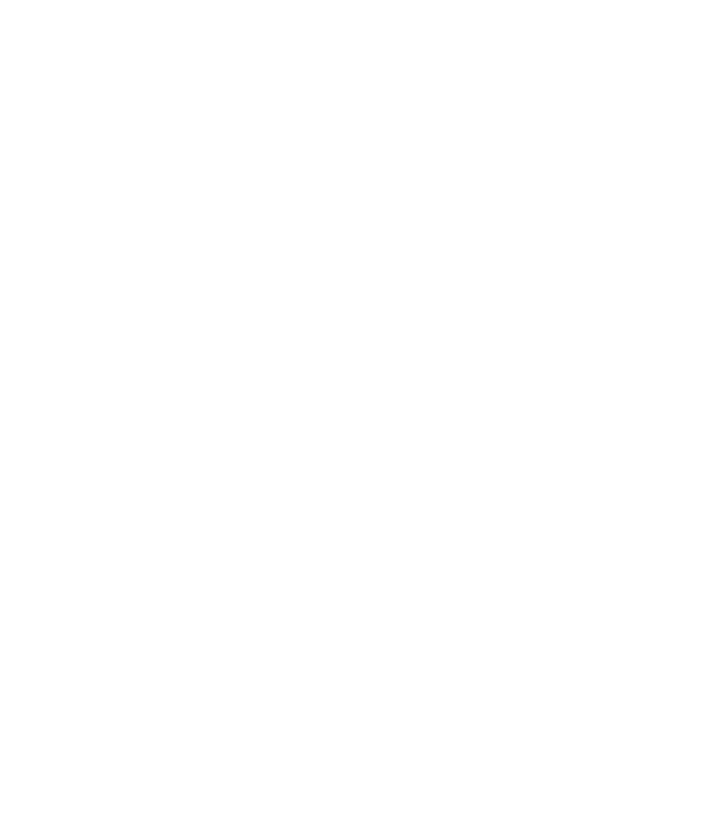 Cash-Flow-Pattern-Of-An-An-Asset